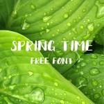 Spring Time Brush Free Font