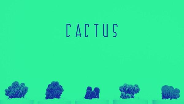 Cactus Display Font