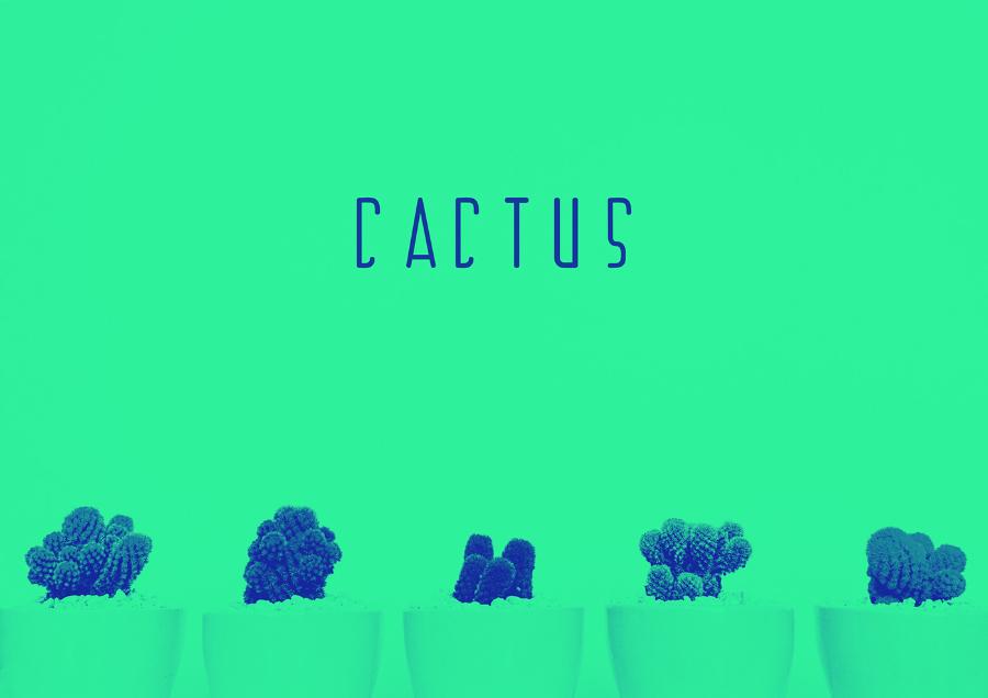 Qedrim-Uka_Cactus-Free-Typeface_080417_prev01