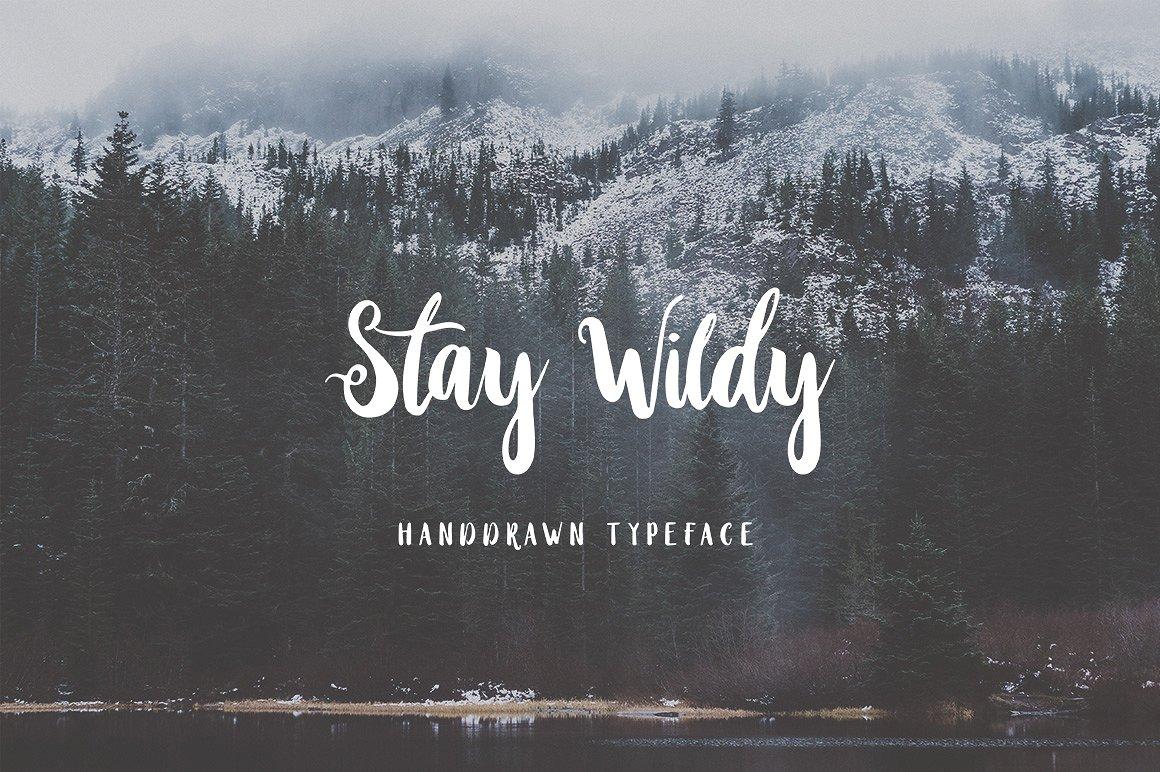 stay-wildy-script-font-1