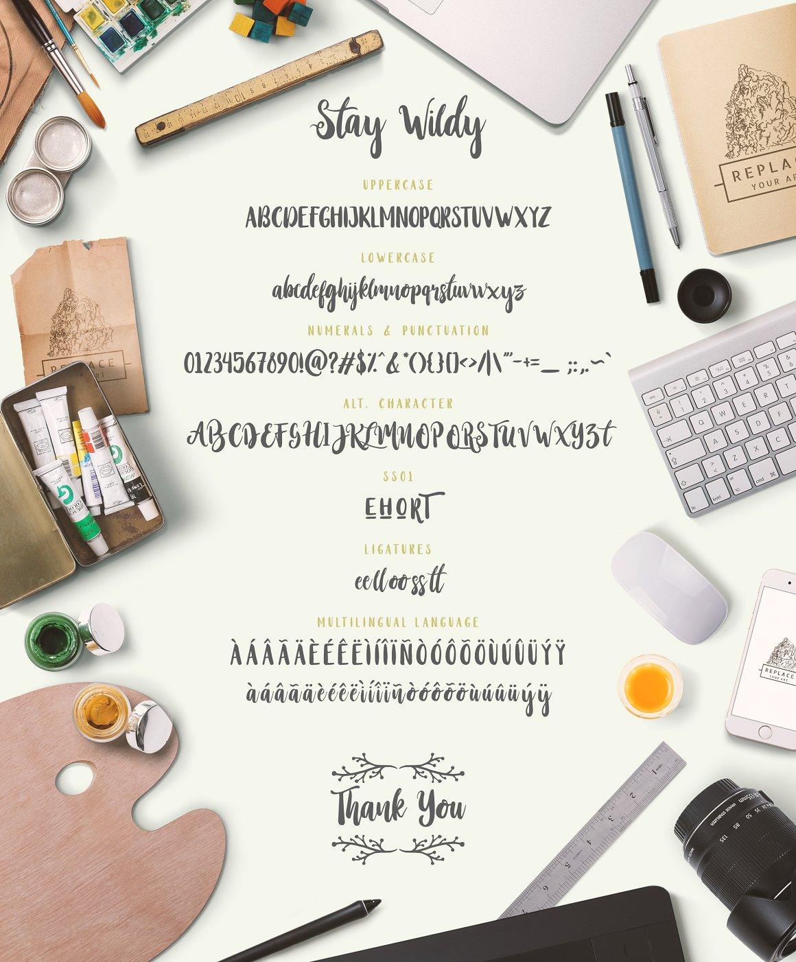 stay-wildy-script-font-4