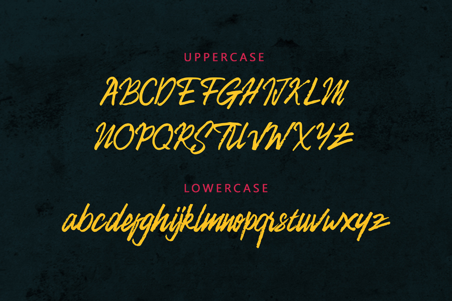camellion-brush-font-1