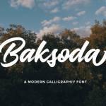 Baksoda Script Font