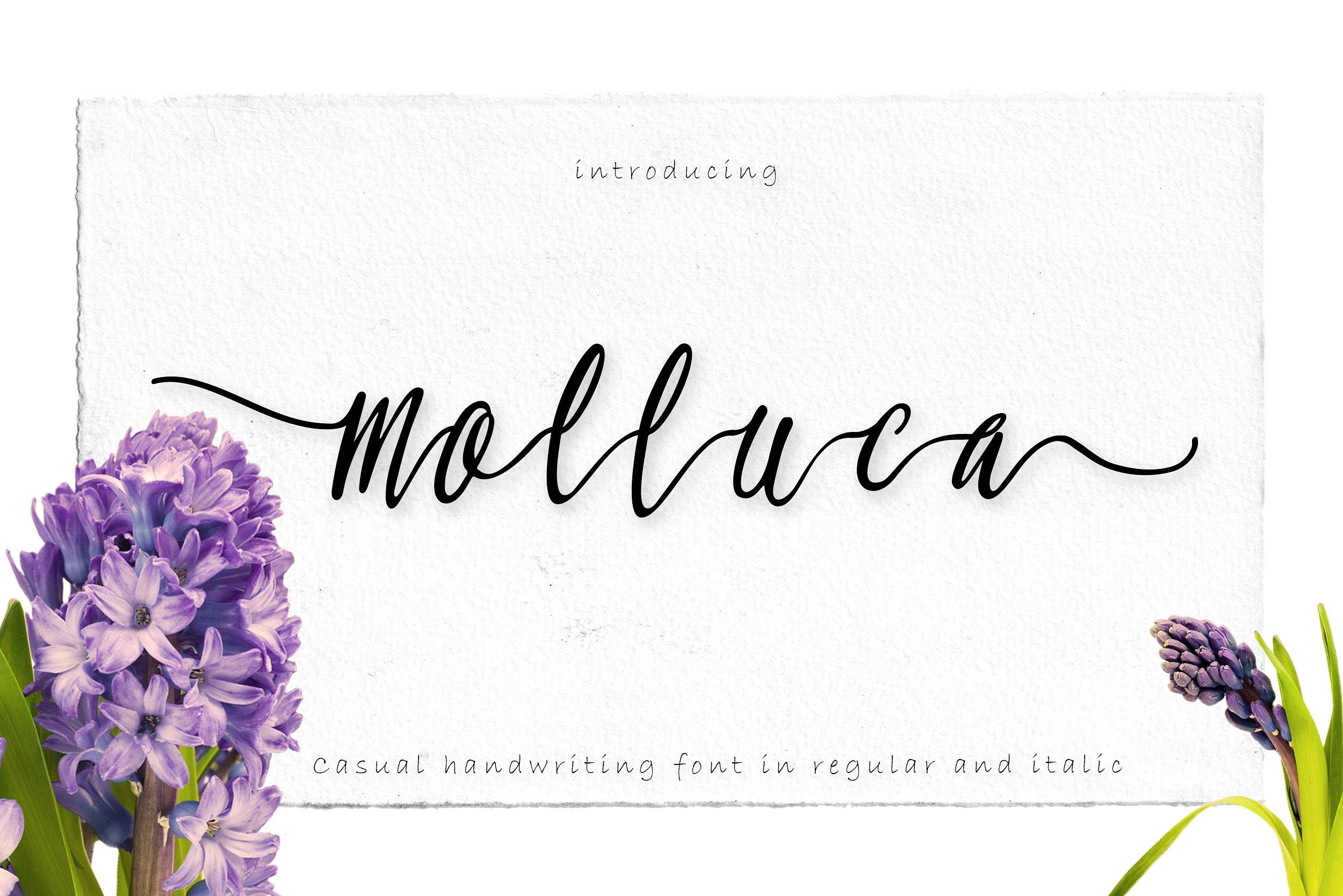 molluca-script-font