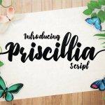 Priscillia Script Font