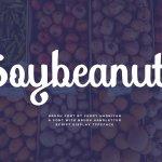 Soybeanut Script Font
