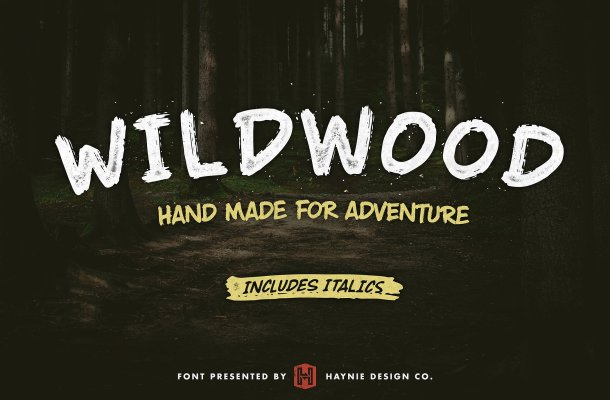 Wildwood Dry Brush Font