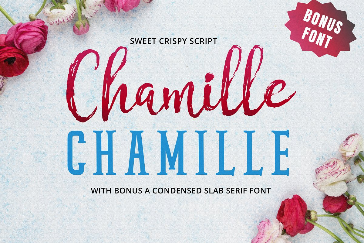 chamille-font-duo