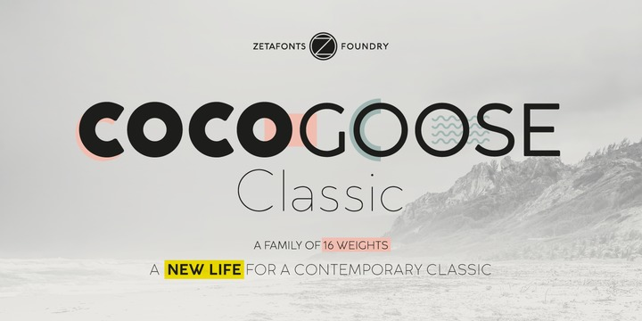 cocogoose-classic-font-famly