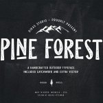 Pine Forest Font