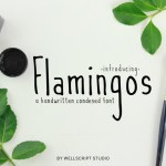 Flamingos Handwritten Font