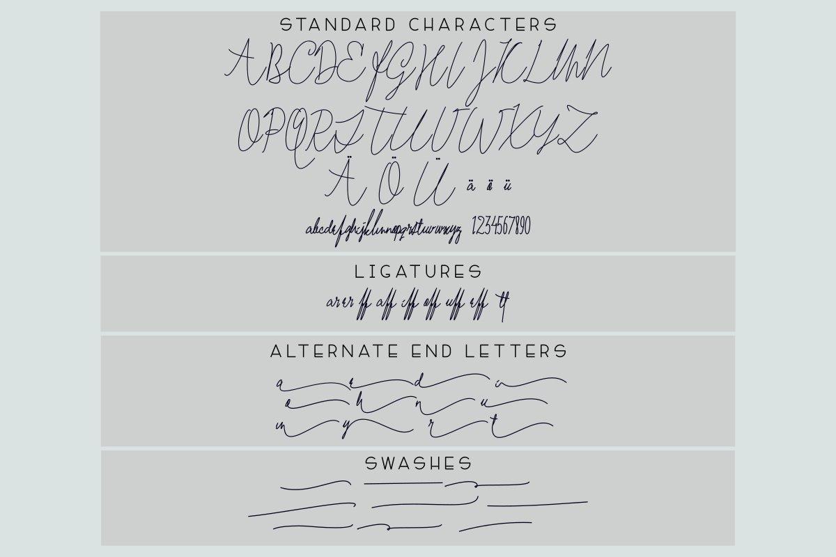Mae Nitta Signature Handwritten Font