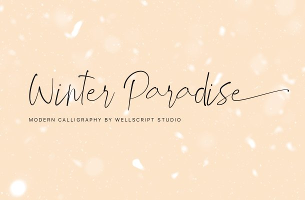 Winter Paradise – Modern Script Font