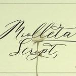 Miolleta Calligraphy Font