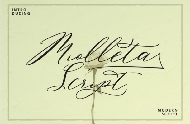 Miolleta Calligraphy Font