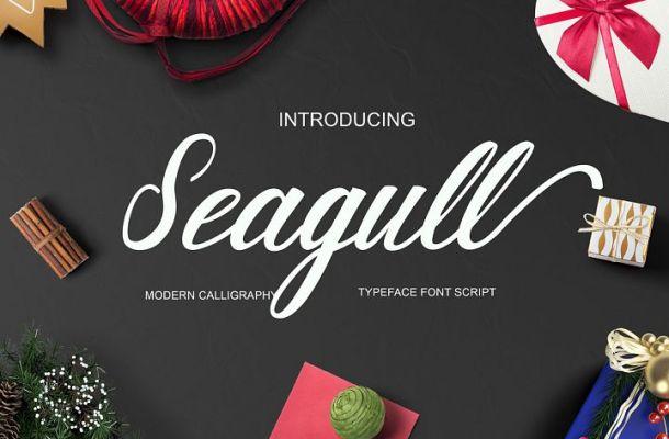 Seagull Script Font