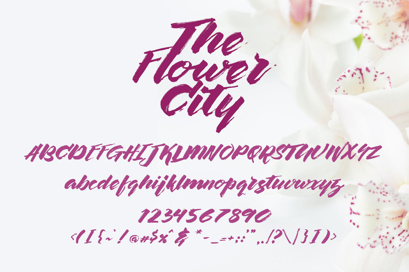The-Flower-City-Font-3
