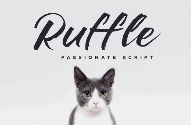 Ruffle Brush Font