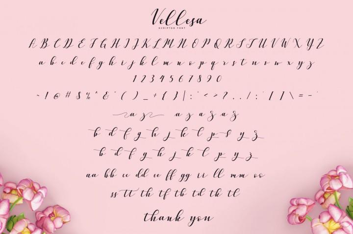 vellesa-script-font-2