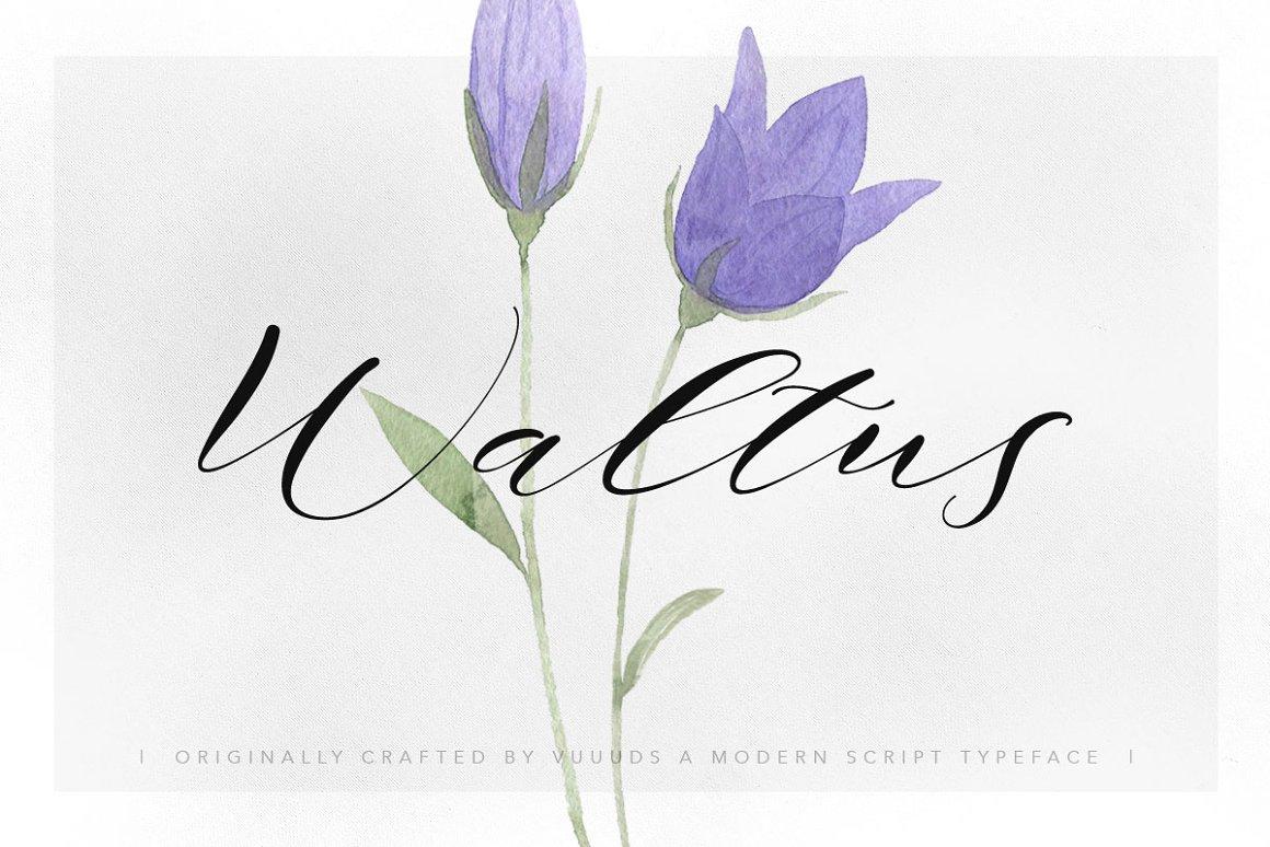 Waltus-Font