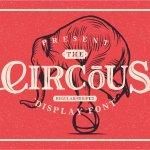 The Circous Typeface Font