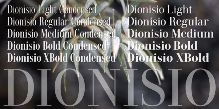 Dionisio-Font-4