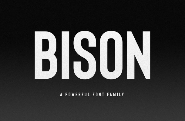 Bison Sans Serif Font