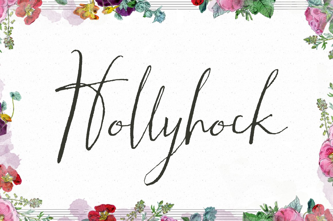 Hollyhock-Font