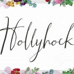 Hollyhock Calligraphy Font