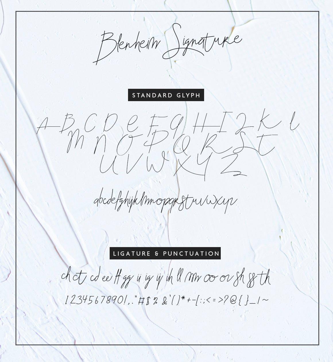 Blenheim-Font-3