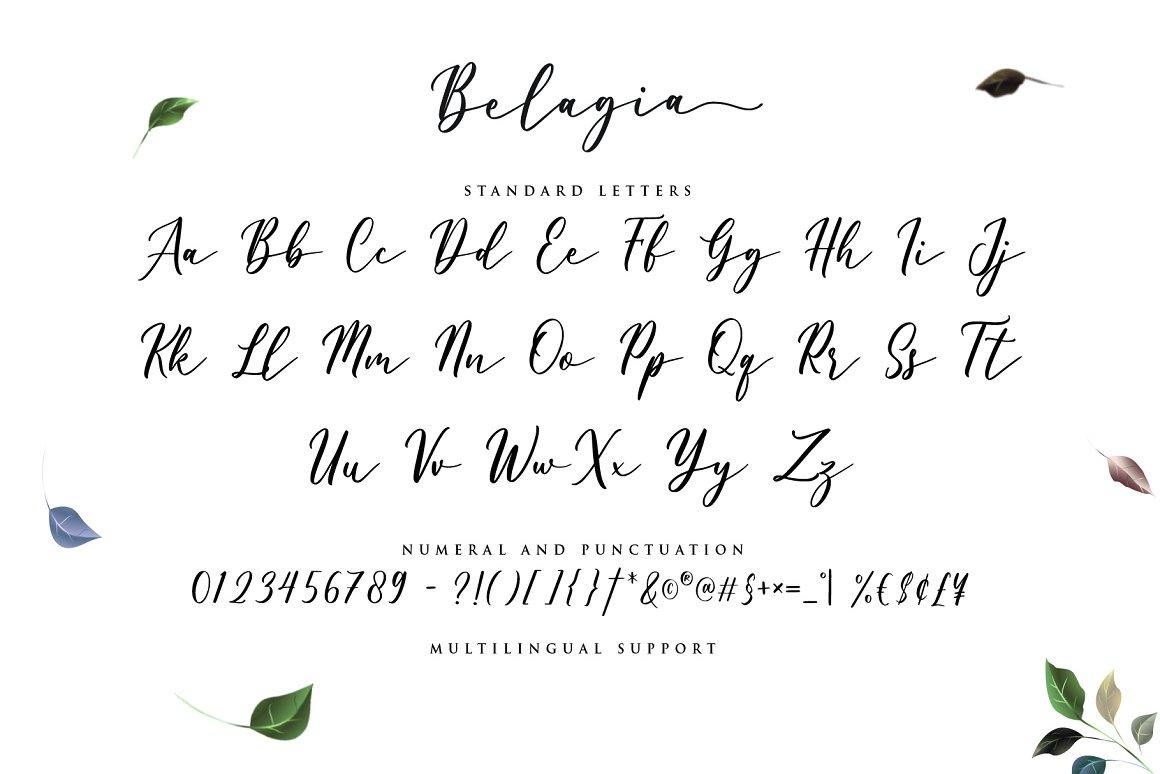 Belagia-Font-3