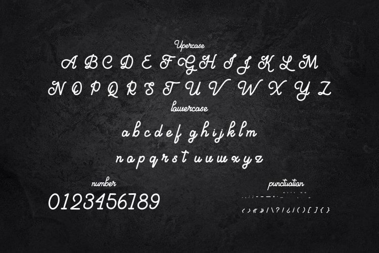 Aloritma-Monoline-Script-Font-3