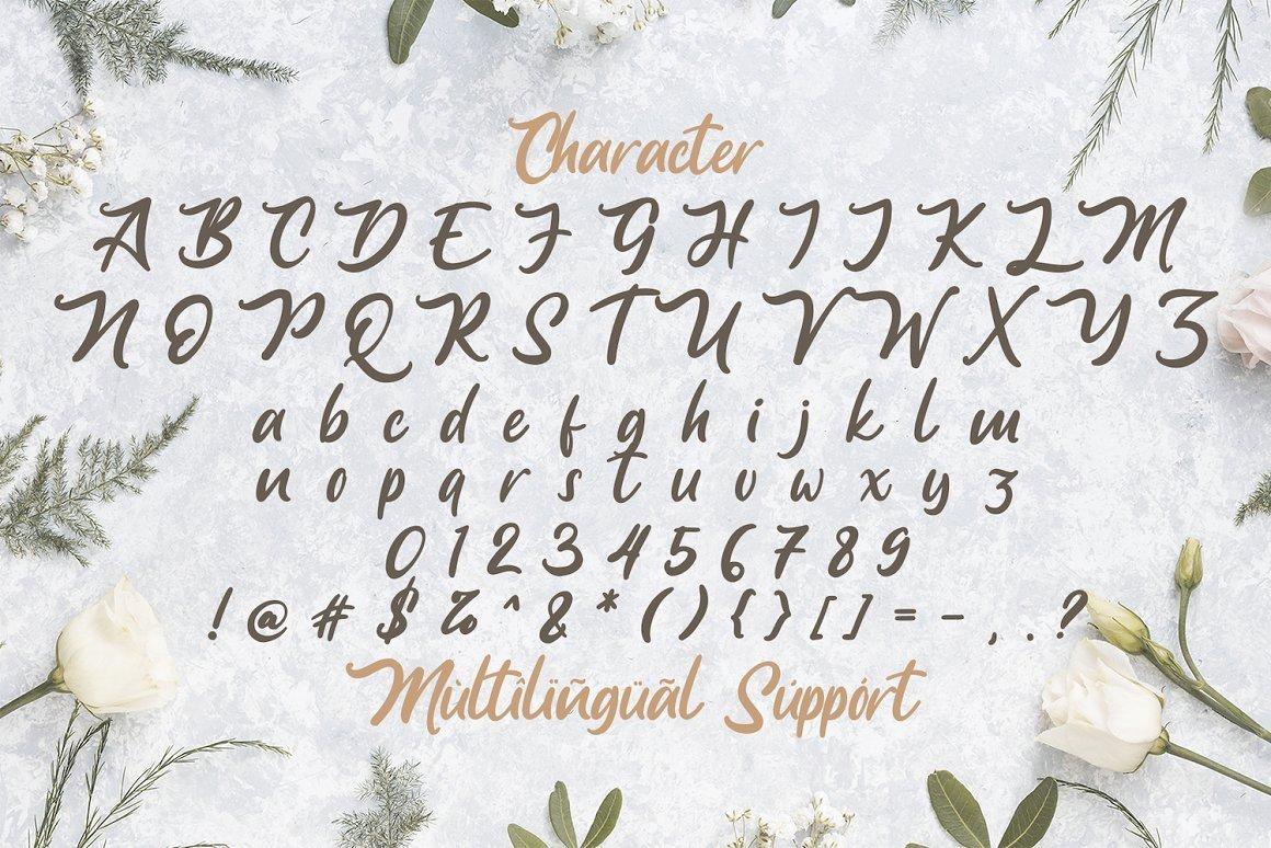 Anjelica-Bold-Script-Font-4