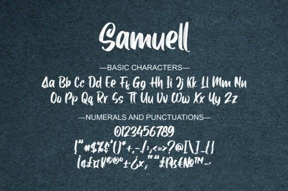 Samuell-Brush-Script-Font-4