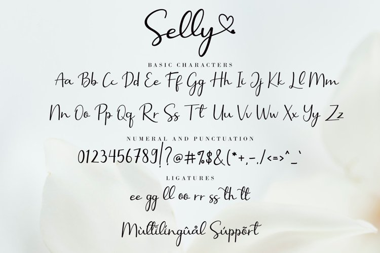 Selly-Calligraphy-Font-3