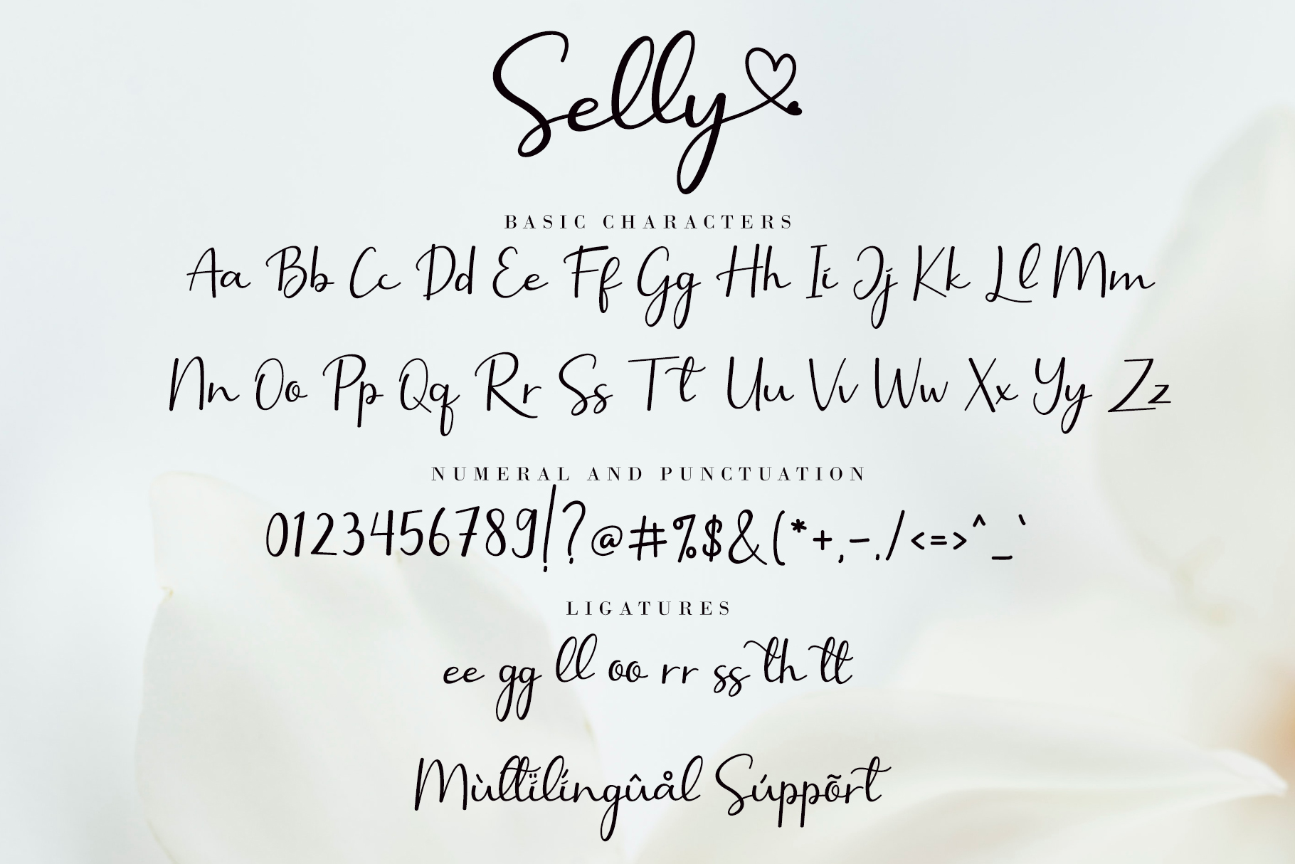 Selly-Font-3
