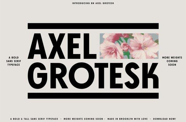 Axel Grotesk Font