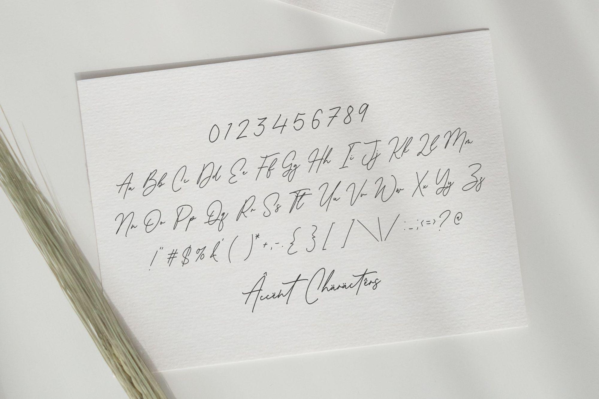 Antonio-Fischer-Signature-Monoline-Script-Font-3