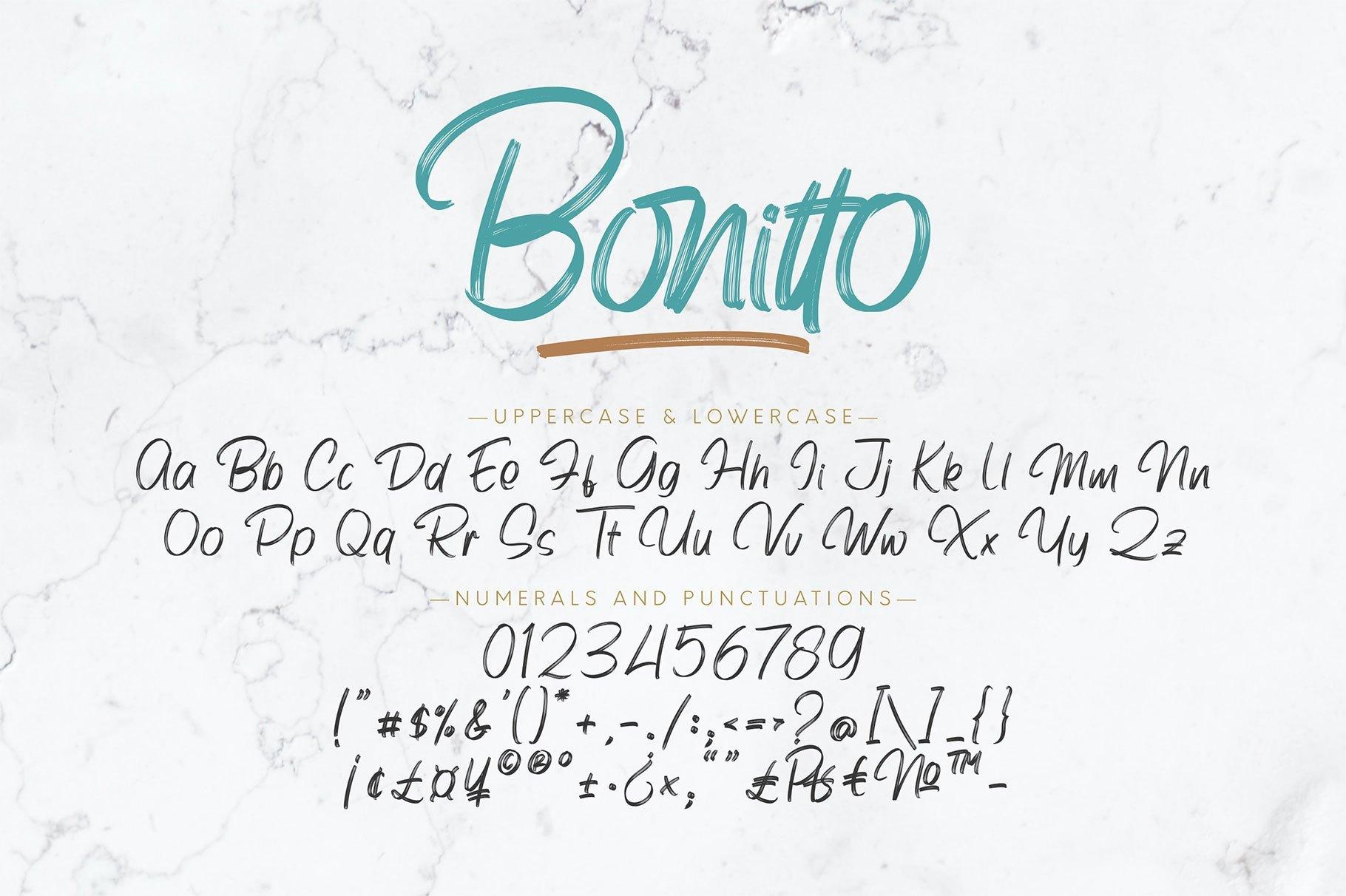 Bonitto-Brush-Script-Font-3