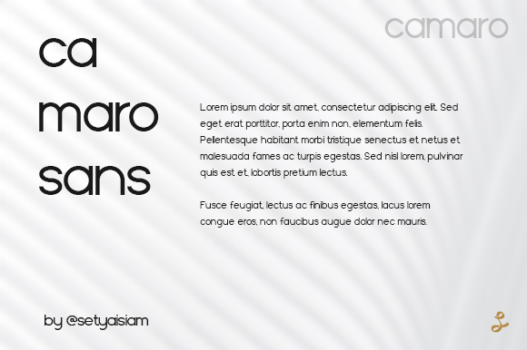 Camaro-Sans-Serif-Font-3