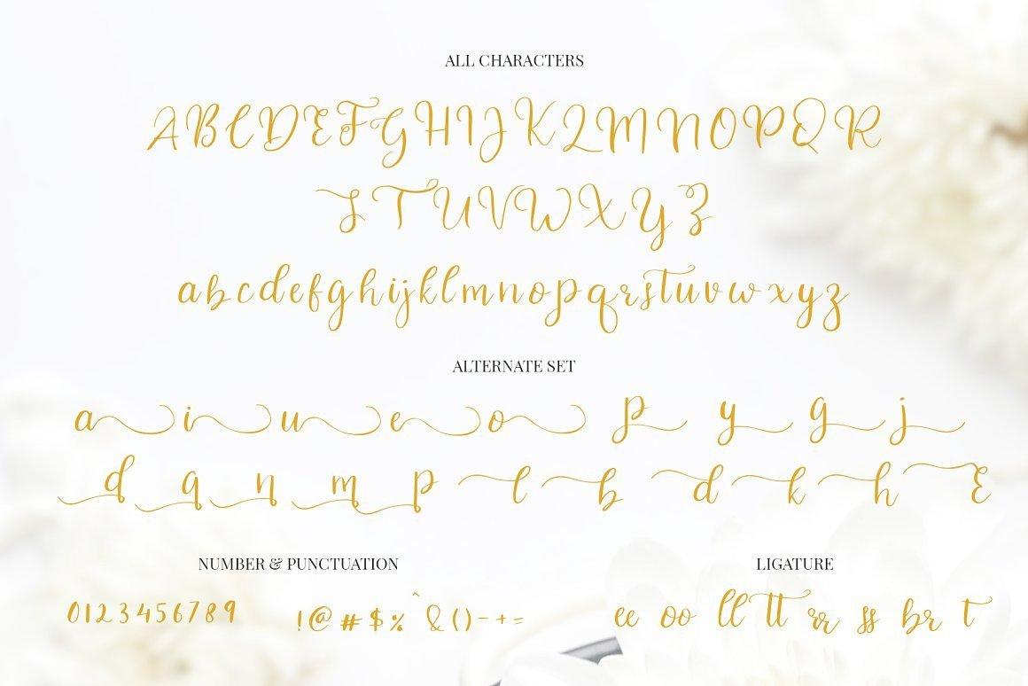 Celinetta-Modern-Calligraphy-Font-3