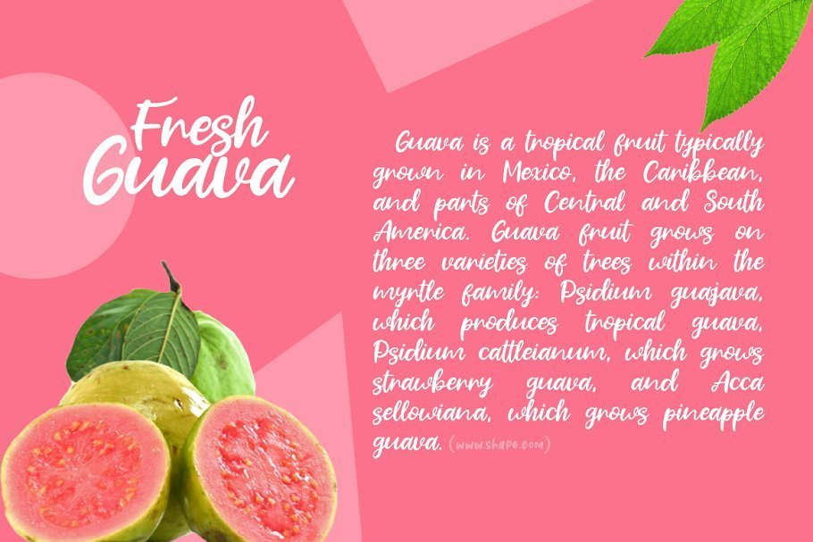 Fresh-Guava-Bold-Script-Font-2