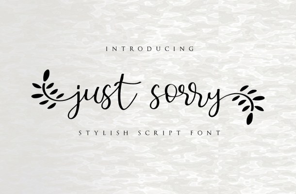Just Sorry Calligraphy Script Font