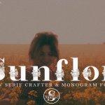 Sunflor Serif Font