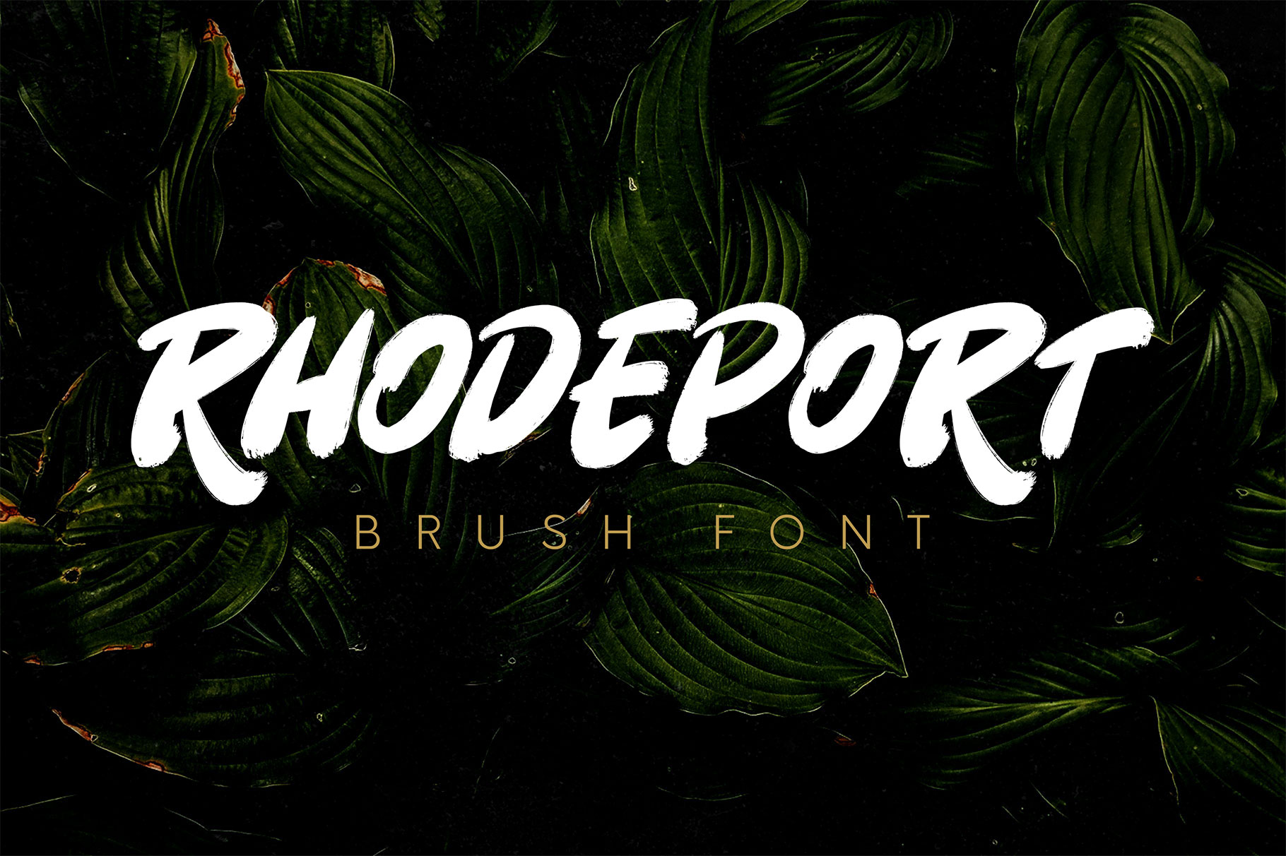 1.-cover-rhodeport