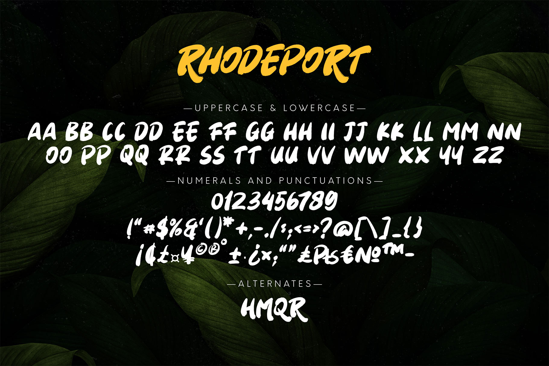 2.-preview-rhodeport-9