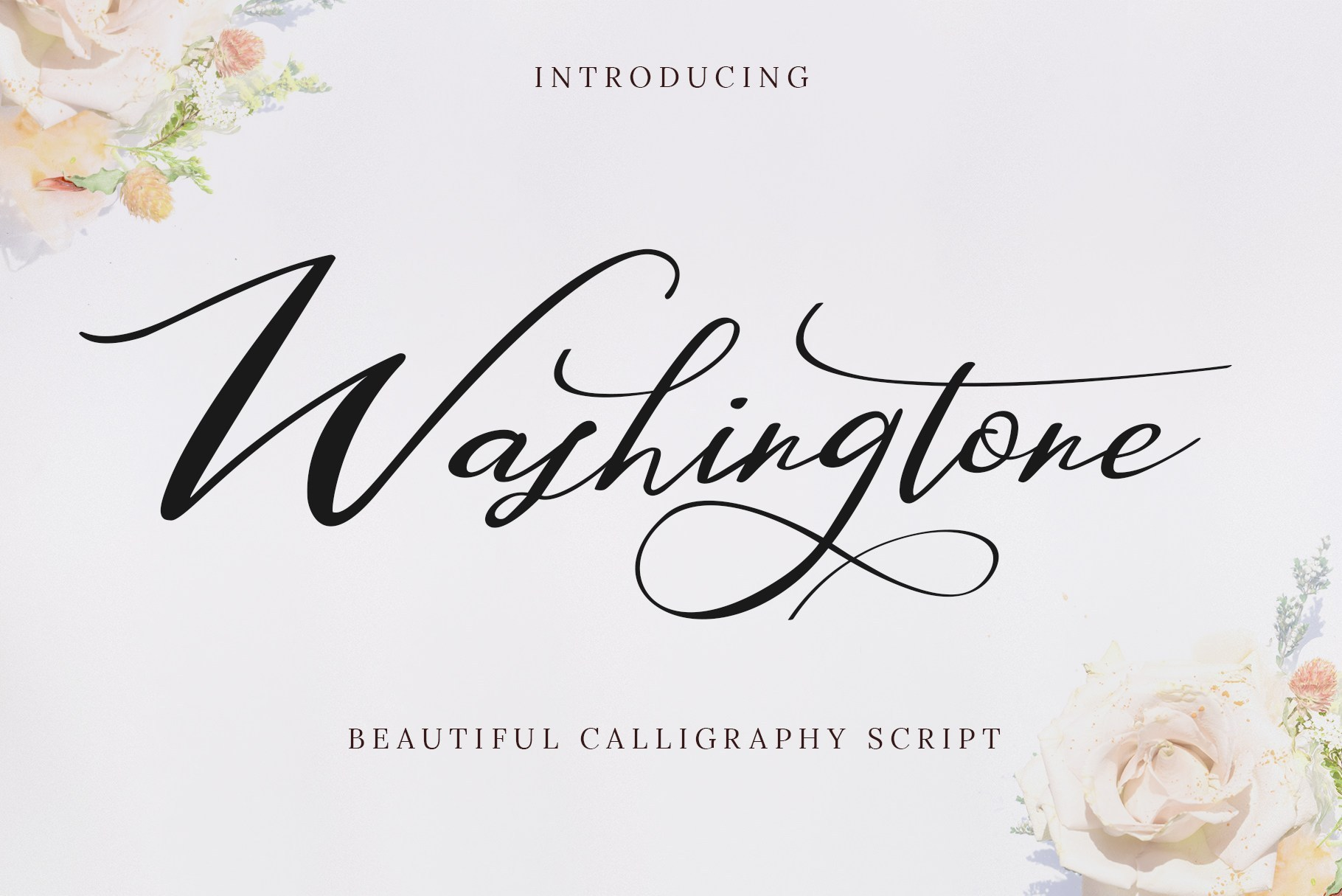 Washington-Beautiful-Calligraphy-Script-Font-1