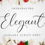 Elegant Font