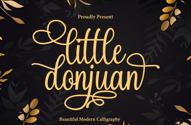 Little Donjuan Font