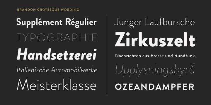 brandon-grotesque-font-family-3